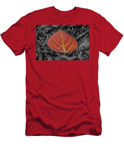 Orange Aspen Leaf Men's T-Shirt (Athletic Fit)