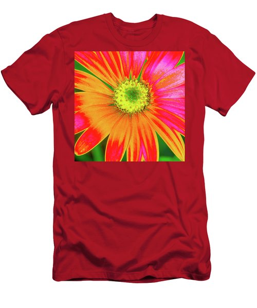 Pop Art Osteospermum 2 Men's T-Shirt (Athletic Fit)