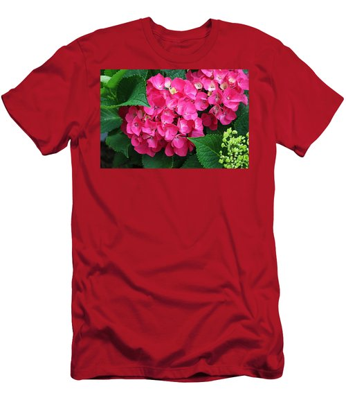 Spring Hydrangea Men's T-Shirt (Athletic Fit)