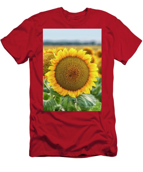 Men's T-Shirt (Athletic Fit) featuring the photograph Sunflower by Bitter Buffalo Photography