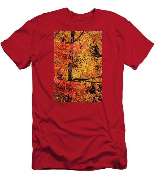 The Colors Of Fall Men's T-Shirt (Athletic Fit)