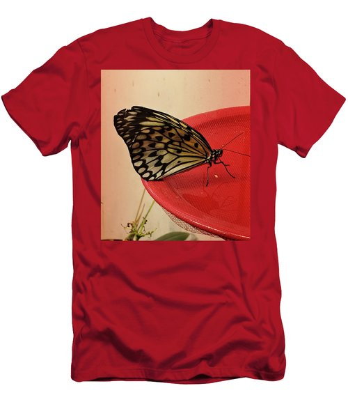 Torn Butterfly Men's T-Shirt (Athletic Fit)