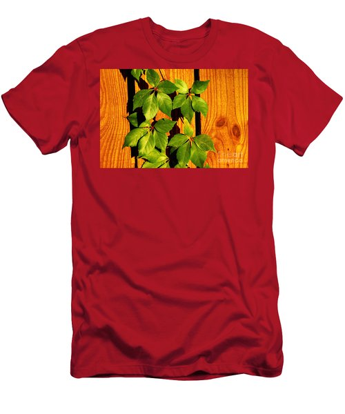 Wood With Green Leaves Men's T-Shirt (Athletic Fit)