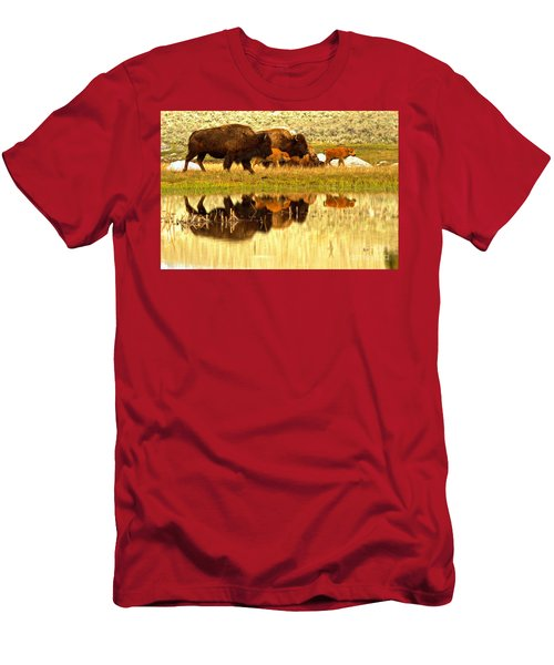 Yellowstone Spring Bison March Reflections Men's T-Shirt (Athletic Fit)