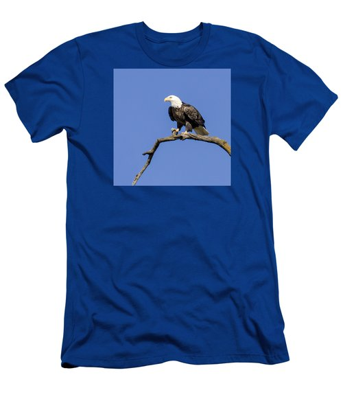 King Of The Sky Men's T-Shirt (Athletic Fit)