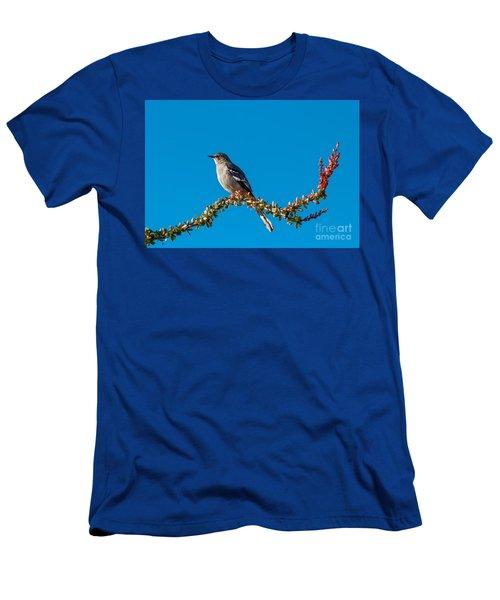 Northern Mockingbird Men's T-Shirt (Slim Fit) by Robert Bales