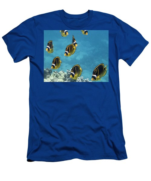 Racoon Butterflyfish  Chaetodon Lunula Men's T-Shirt (Athletic Fit)