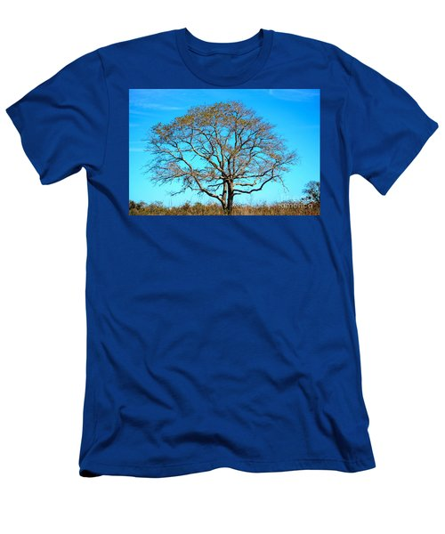 Beautiful Branching Men's T-Shirt (Slim Fit) by Debra Martz