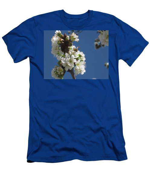Bee On Cherry Blossoms Men's T-Shirt (Athletic Fit)