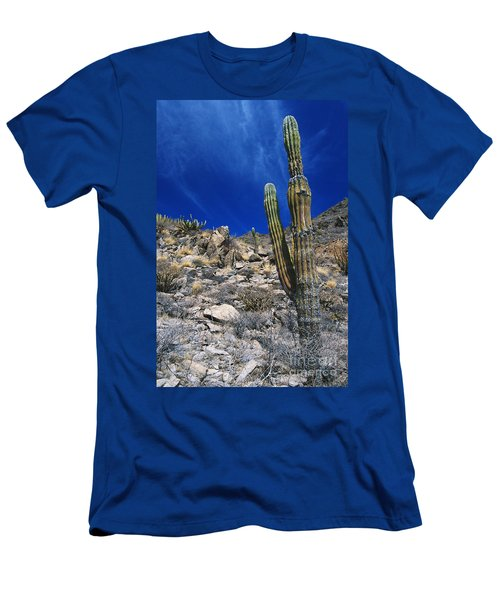 Cardon Cactus In Mexico Men's T-Shirt (Athletic Fit)