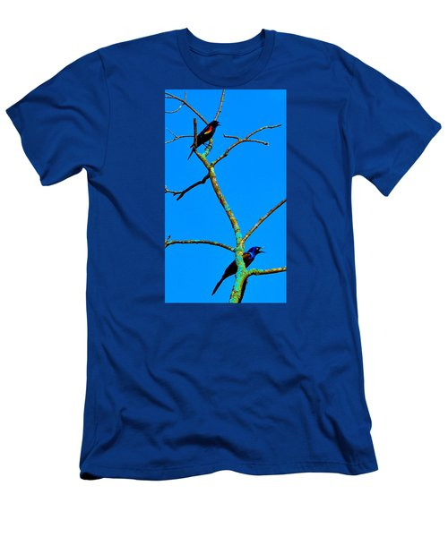 Colorful Duet Men's T-Shirt (Slim Fit) by Zafer Gurel