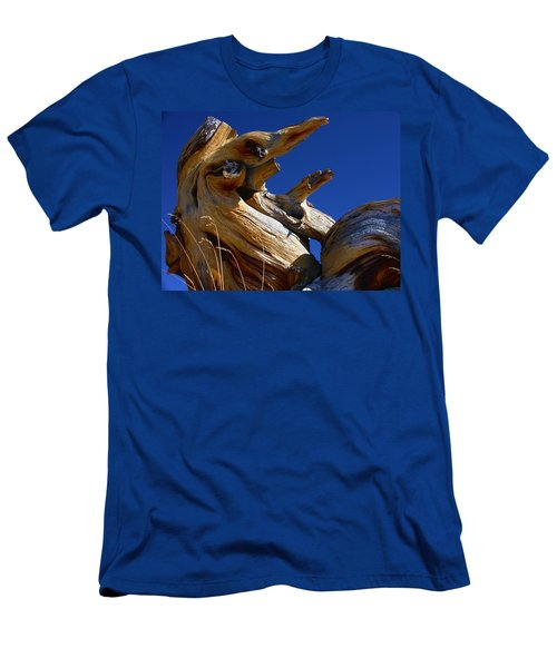 Colorful Roots Men's T-Shirt (Athletic Fit)