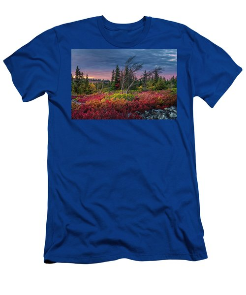 Dolly Sods Windswept Sunset Men's T-Shirt (Athletic Fit)