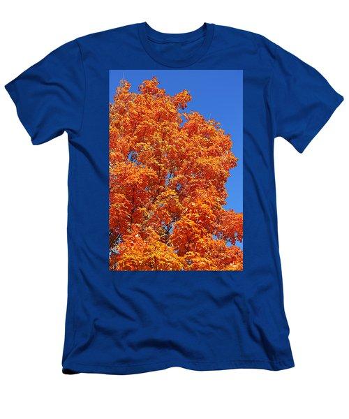 Fall Foliage Colors 18 Men's T-Shirt (Athletic Fit)