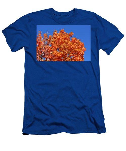 Fall Foliage Colors 19 Men's T-Shirt (Athletic Fit)