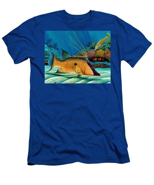 Hog And Filefish Men's T-Shirt (Slim Fit) by Steve Ozment