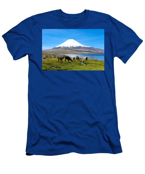 Lake Chungara Chilean Andes Men's T-Shirt (Athletic Fit)