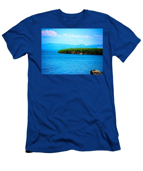Lakeview Men's T-Shirt (Athletic Fit)