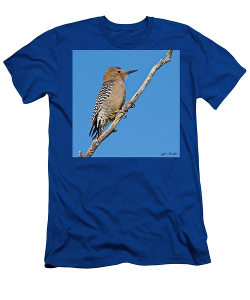 Male Gila Woodpecker Men's T-Shirt (Athletic Fit)