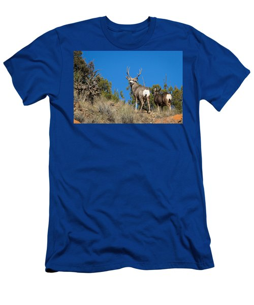 Mule Deer Buck Men's T-Shirt (Athletic Fit)