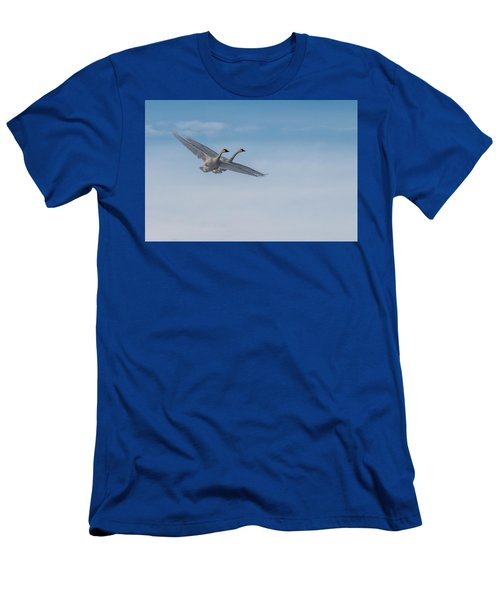 Trumpeter Swan Tandem Flight I Men's T-Shirt (Athletic Fit)