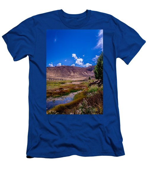 Peaceful Valley II Men's T-Shirt (Athletic Fit)