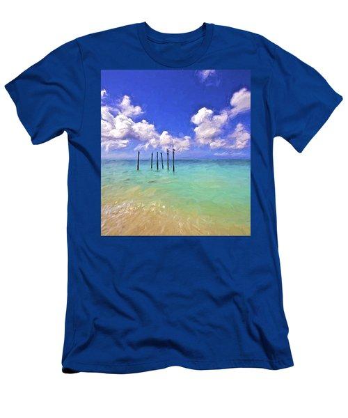 Pelicans Of Aruba Men's T-Shirt (Athletic Fit)