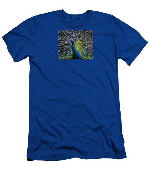 Portrait Of A Peacock Men's T-Shirt (Slim Fit) by Venetia Featherstone-Witty