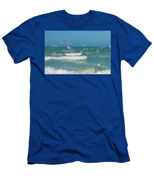 Royal Tern Frenzy Men's T-Shirt (Athletic Fit)