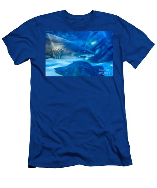 Shark Men's T-Shirt (Slim Fit) by Ray Warren