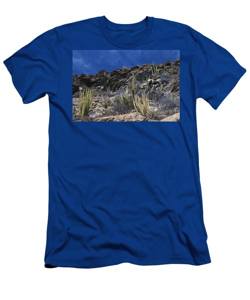 Sonoran Desert, Mexico Men's T-Shirt (Athletic Fit)