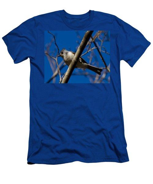 Tufted Titmouse Men's T-Shirt (Slim Fit) by Robert L Jackson