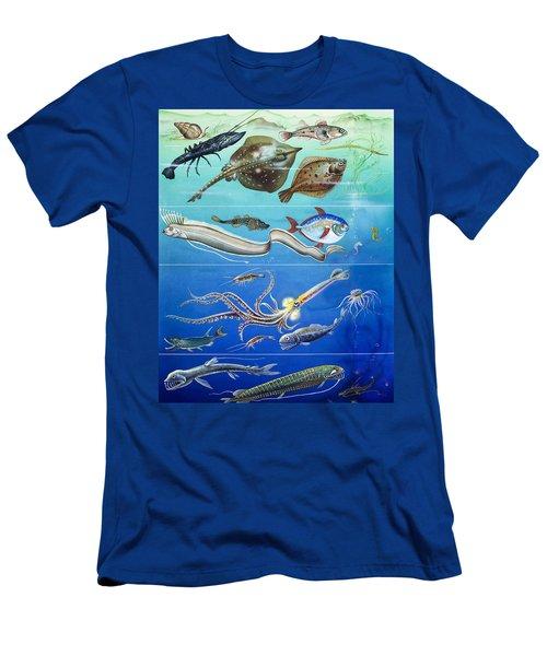 Underwater Creatures Montage Men's T-Shirt (Athletic Fit)