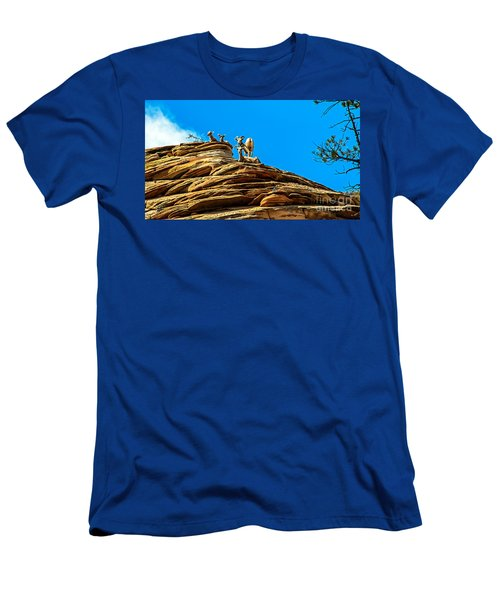 Zion Bighorn Sheep Men's T-Shirt (Athletic Fit)