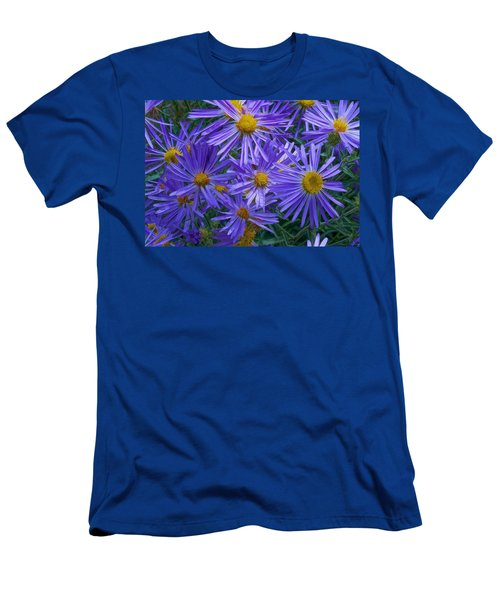 Blue Asters Men's T-Shirt (Athletic Fit)