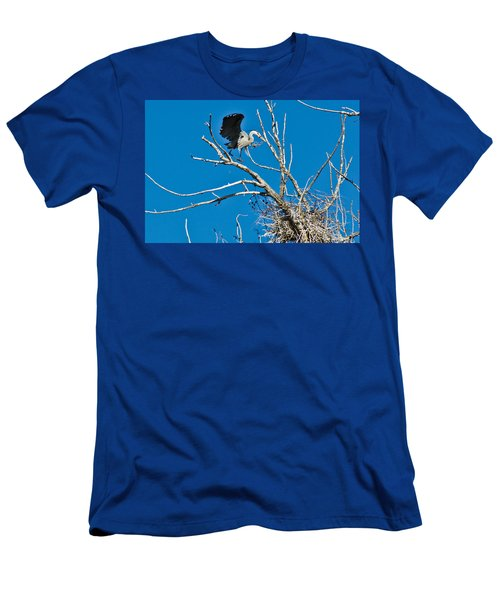 Springtime Nesting In Colorado Men's T-Shirt (Athletic Fit)