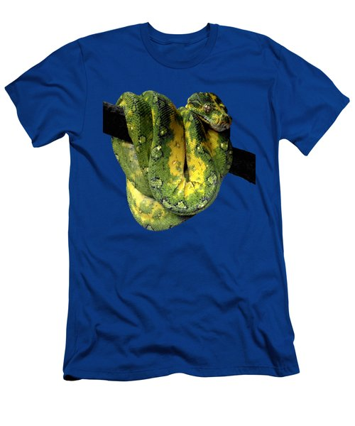 Green Tree Python 2 Men's T-Shirt (Slim Fit) by Alondra Hanley