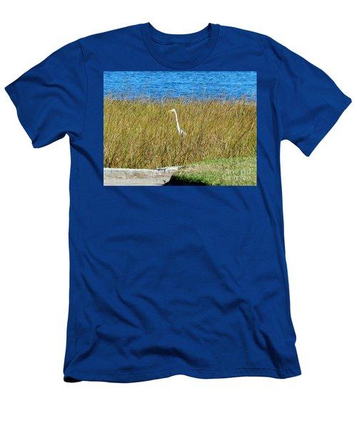Audubon Park Sighting Men's T-Shirt (Athletic Fit)
