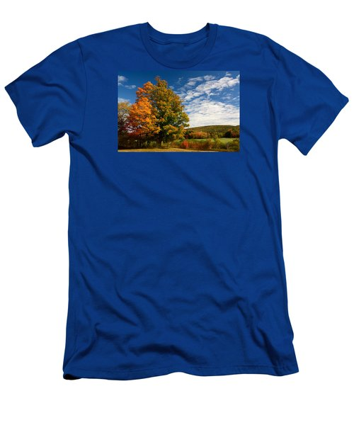 Autumn Tree On The Windham Path Men's T-Shirt (Slim Fit) by Nancy De Flon