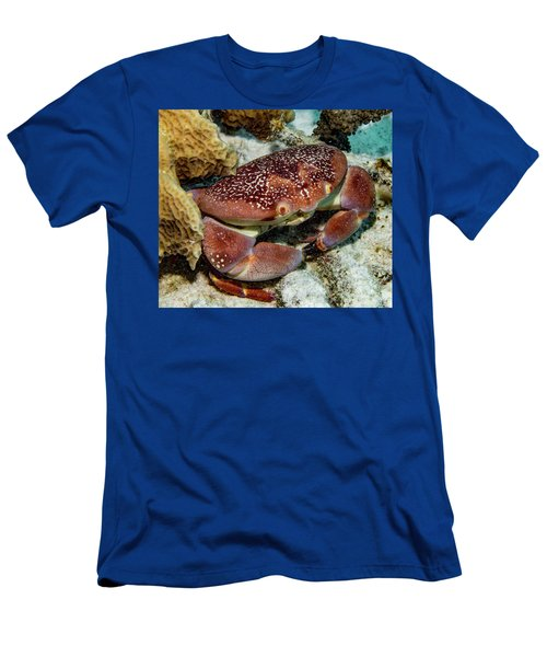Batwing Coral Crab Men's T-Shirt (Athletic Fit)