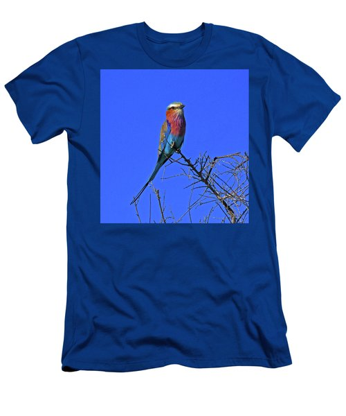 Bird - Lilac-breasted Roller Men's T-Shirt (Athletic Fit)