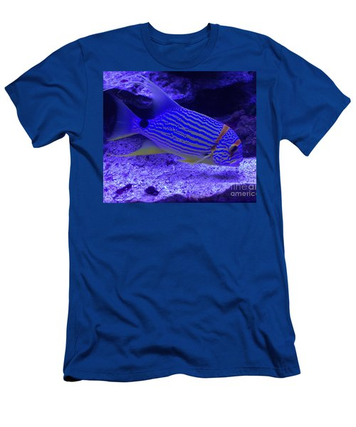 Blue Fish Groupie Men's T-Shirt (Slim Fit) by Richard W Linford