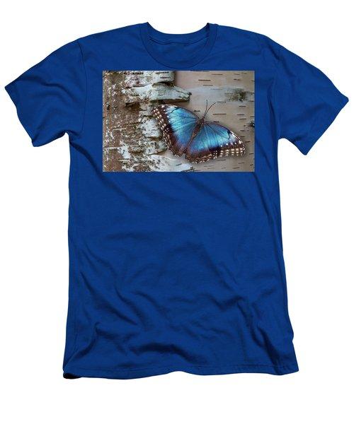 Blue Morpho Butterfly On White Birch Bark Men's T-Shirt (Athletic Fit)