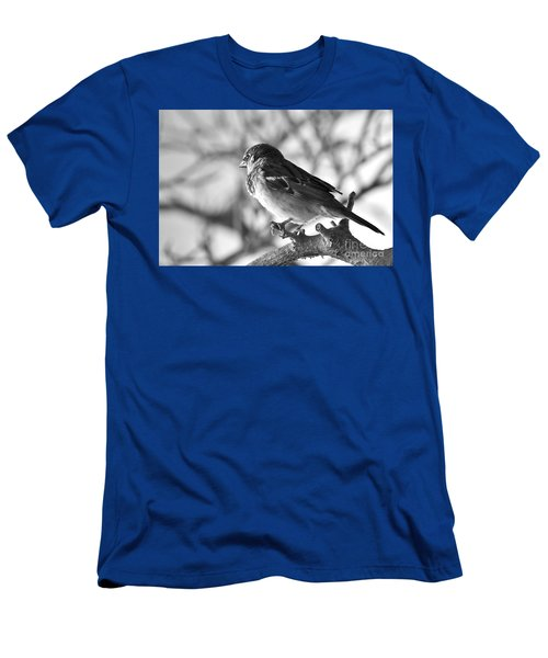 Chickadee Men's T-Shirt (Slim Fit) by Sheila Ping