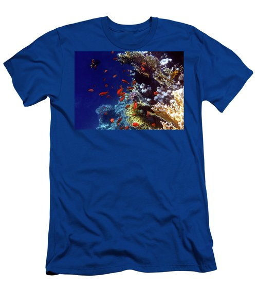 Colorful Lyretail Anthias Men's T-Shirt (Athletic Fit)