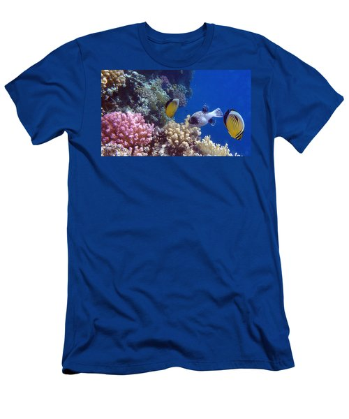 Colorful Red Sea Fish And Corals Men's T-Shirt (Athletic Fit)
