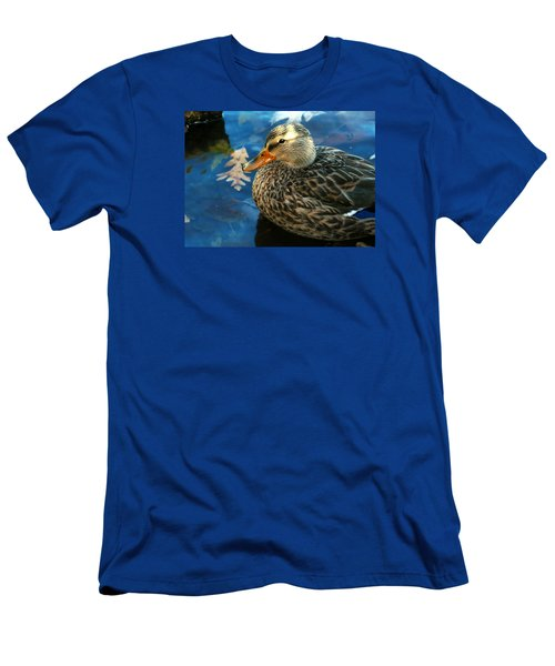 Female Mallard Duck In The Fox River Men's T-Shirt (Athletic Fit)
