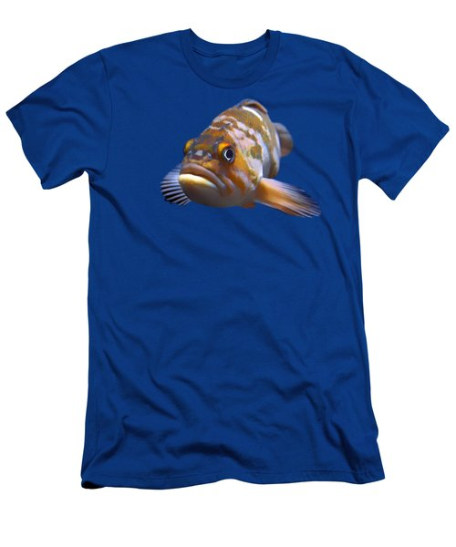 Fish - Transparent Men's T-Shirt (Slim Fit) by Nikolyn McDonald