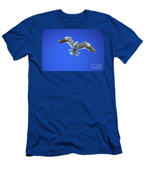 Flying Gull Men's T-Shirt (Slim Fit) by Robert Bales