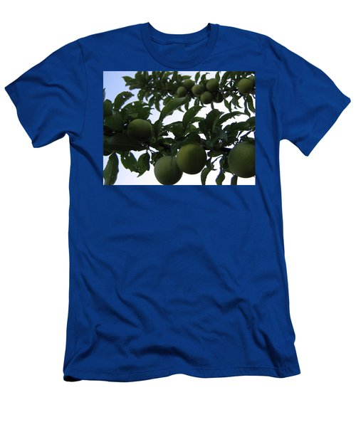 Fruit And Sky_raindrops Men's T-Shirt (Athletic Fit)
